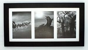 9x18 Black Wood Collage Frame With Mat For 3 5x7 Pictures With