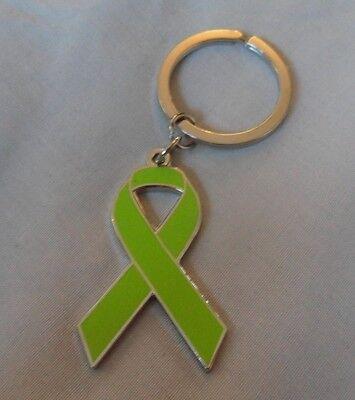 *NEW* Hodgkin/'s Lymphoma Awareness ribbon enamel purple keyring Charity,badge.