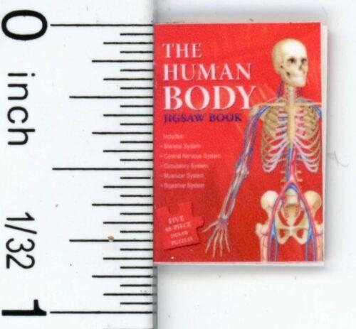 Dollhouse Miniature The Human Body Book