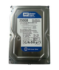WESTERN DIGITAL 250 Gb Sata Hard Disk