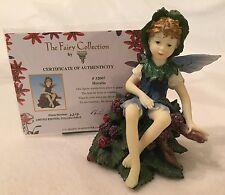 DEZINE ~ The Fairy Collection ~ HORATIO  #32007 ~ Ltd Ed Figurine w COA