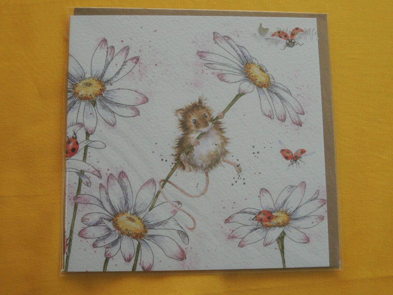 1 x ratón plegable tarjetas de sobres wrendale Designs tarjetas de felicitación margaritas marienkä