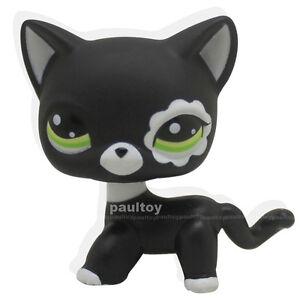 Littlest-Pet-Shop-RARE-Black-Short-Hair-Cat-kitty-Animal-Figure-Tpy-LPS-2249