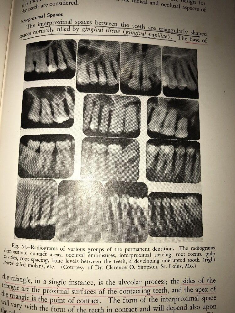 1940 Vintage Textbook Of Dental Anatomy And Physiology Teeth ...
