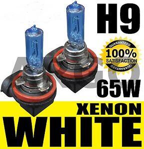 Blue-White-H9-Holden-Commodore-VE-High-Beam-LIGHT-Bulbs-Globes
