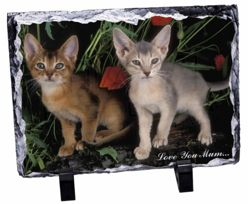 Abyssinian Cats 'Love You Mum' Photo Slate Christmas Gift Ornament, AC42lymSL