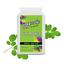 Suppzup-Moringa-Oleifera-500mg-120s-Capsules-Vitamins-Minerals-Antioxidants thumbnail 4