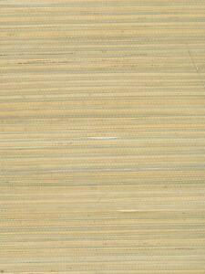 Wallpaper-Real-Natural-Grasscloth-Textured-Golden-Tan-Green-on-Cream