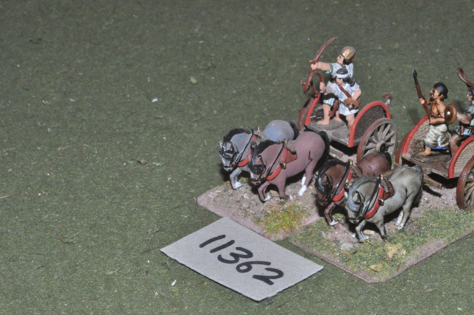 25mm medieval   gasgan - chariots 2 chariots - chariots (11362)
