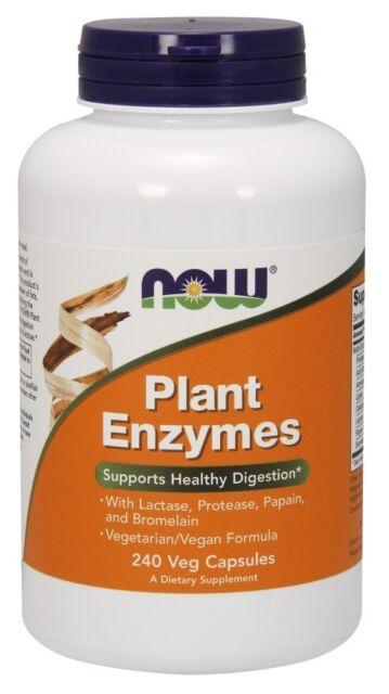 NOW Foods Plant Enzymes + Lactase, Protease, Papain & Bromelain 240 Veg Capsules