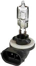 894 Halogen Bulb - 12V - 37.5W CandlePower  894