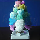 Magic Growing Tree Toy Boys Girls Novelty Xmas Gift Christmas Stocking Filler