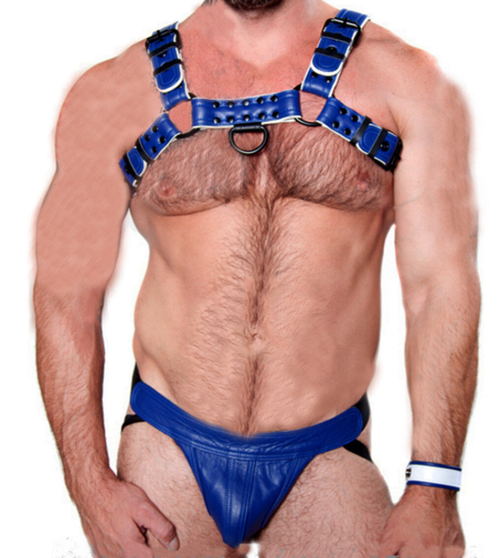 Mens Leather 'H' Bulldog HARNESS GAY  bluee Leather white piping  Harness 38 to56