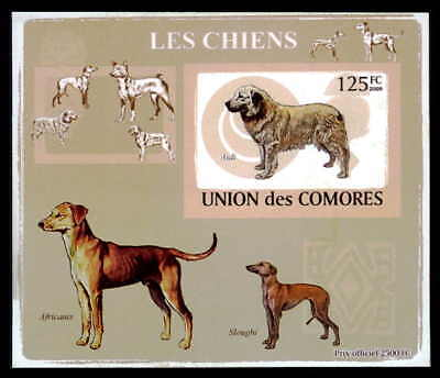 Comores Epreuve De Luxe Hunde Hund Dogs Dog Chiens Chien Deluxe Sheet Dr28
