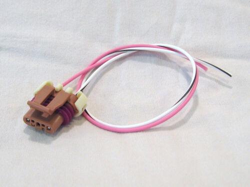 GM Ignition Coil Connector Pigtail 2 Wire 2000-06 Vortec 4.3l LU3 D577 PT-IC3-D