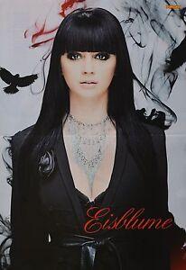 EISBLUME-A3-Poster-ca-42-x-28-cm-Clippings-Fan-Sammlung-NEU
