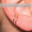 Details about  /14k gold Fake Piercings 18 gauge Hoop Earrings Conch Cartilage Ear Cuff