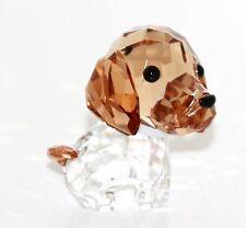 Swarovski Figur Hund Welpen Max der Beagle Original Verpackung 5063329