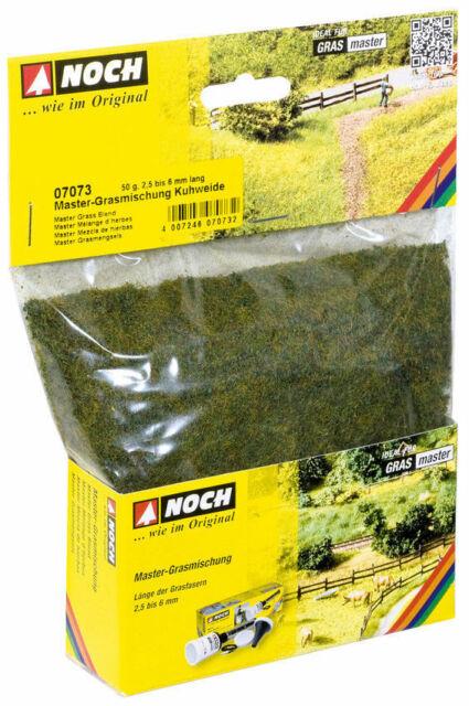 50 g Beutel NOCH 07106 Wildgras 6 mm lang  ++ NEU in OVP dunkelgrün