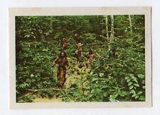 figurina - SANDOKAN ALLA RISCOSSA BOY 1976 - numero 258