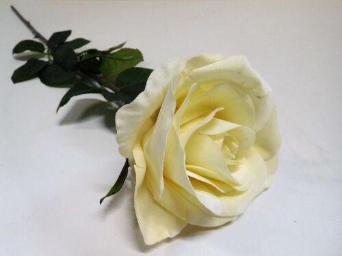 Rose Bauernrose Seidenblumen Kunstpflanzen weiß creme 86 cm 280002-47 F8