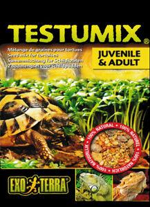 Testumix-Melange-de-graines-a-semer-pour-Tortues-et-Reptiles-75-grammes