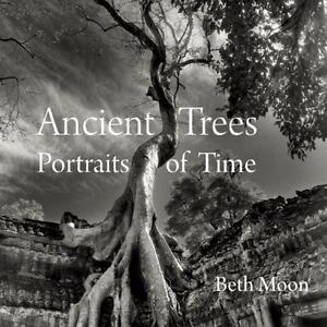 Ancient-Trees-Portraits-of-Time-by-Moon-Beth