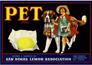 San Dimas Los Angeles County Pet Dog #1 Lemon Citrus Fruit Crate Label Art Print