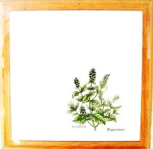 Oak Wood Tile Trivet Peppermint Herb Spice Garden Hot P