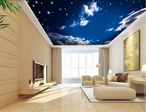 3D Starry Cloud View 7 Wall Paper Wall Print Decal Wall Deco AJ WALLPAPER Summer