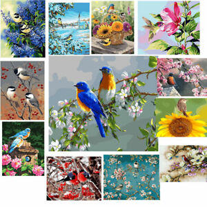 Birds-amp-Flowers-DIY-Paint-by-Numbers-Kit-Canvas-Easy-Painting-Frame-Unframed