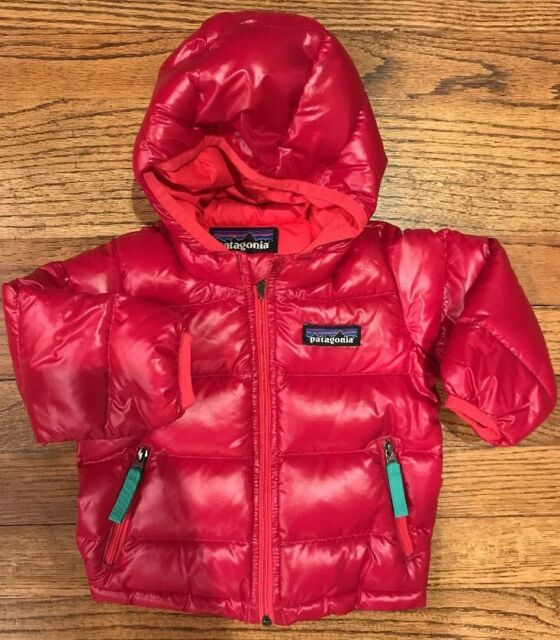 Nwots Patagonia Baby Hi Loft Down Sweater Hoody Girls 3 6m