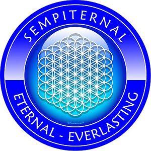 "One 4/"" Sempiternal World Peace Decal Sticker Everlasting ProSticker 2695"