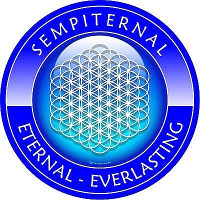 """ProSticker 2694 (One) 4"""" Sempiternal Decal Sticker Eternal Everlasting"""