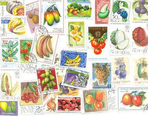 Frutta-e-legumi-collezione-di-200-francobolli-tutti-diversi