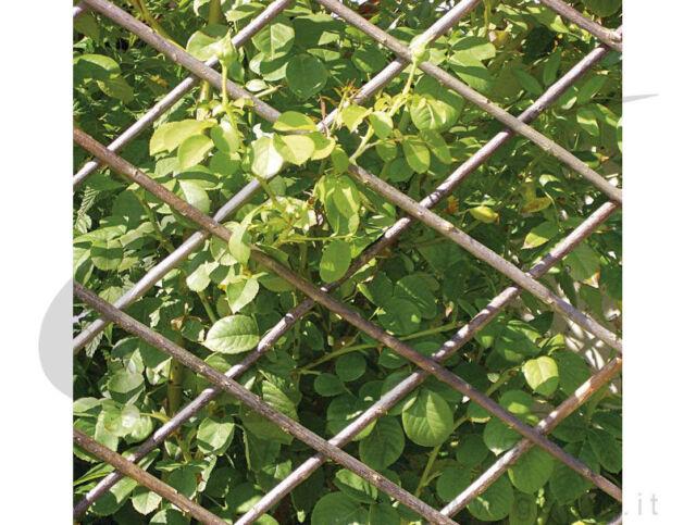 Steccato Estensibile Giardino : Verdemax traliccio estensibile in salice naturale giardino