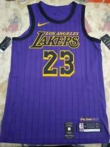 Lifetime Nike Los Angeles Lakers Lebron James City Edition Jersey ...