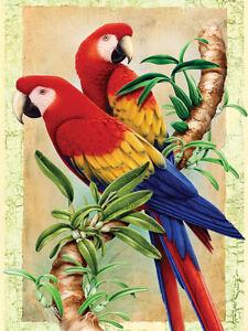Malen Nach Zahlen Papageien Auf Bambus Ebay