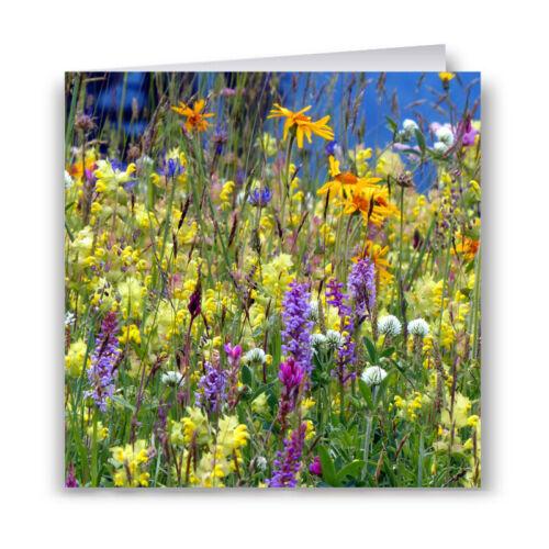Meadow Fleurs Carte de Vœux-Fleurs Sauvages
