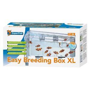 SuperFish Easy Breeding Box Extra Large XL Aquarium Fish Tank Breeder ...