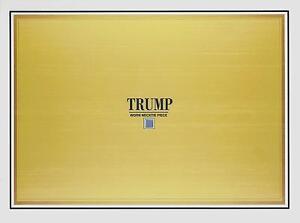 DONALD-TRUMP-personal-WORN-relic-NECKTIE-PIECE-swatch-Presidential-candidate