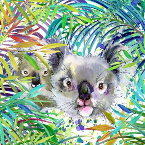 Malen nach Zahlen Koala Bären 40x40 cm