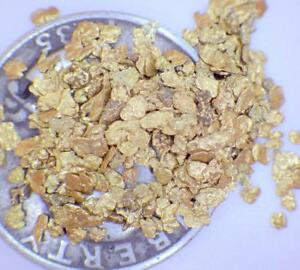 GOLD NUGGETS 5+ GRAMS Placer Alaska Natural #16 Screen Jewelers Grade FREE Ship!