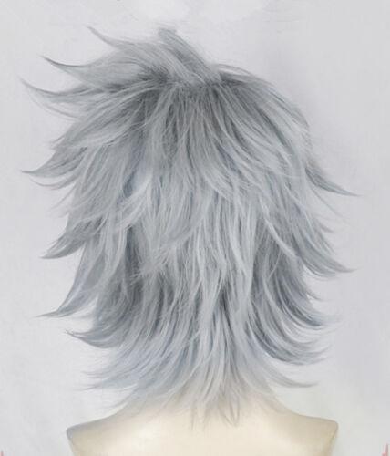 My Hero Boku no Academia Tetsutetsu Grau Grey Perücke Wig Cosplay Kostüme Neu