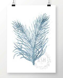 SEA-CORAL-IV-Watercolour-Coastal-Art-Print-Hamptons-Nautical-Beach-Painting