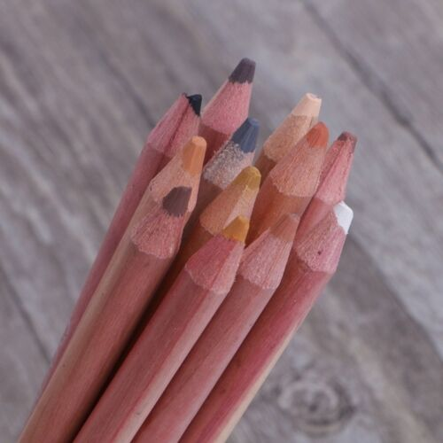 12Pcs Professional Soft Pastel Pencils Wood Skin Tint Pastel Colored Pencil GO6