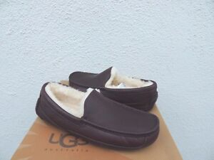 f27f943092b Details about UGG ASCOT CHINA TEA LEATHER/ SHEEPSKIN SLIPPERS, US 8/ EUR  40.5 ~FIT SMALL ~NEW