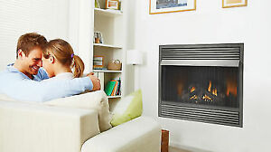 zero clearance gas fireplace venting napoleon gvf42p propane builtin 30000 btu vent zero clearance gas fireplace