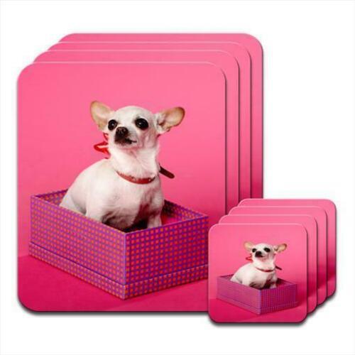 CHIHUAHUA chien assis dans une boîte Lot de 4 sets de table /& SOUS-VERRE