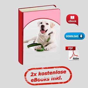 eBook-PDF-Hundeerziehung-Hund-Erziehungs-Ratgeber-Tips-und-Ticks-TOP